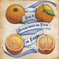 Guia de reconhecimento dos citros em campo