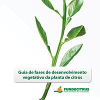 Guia de Fases de Desenvolvimento vegetativo da Planta do Citros