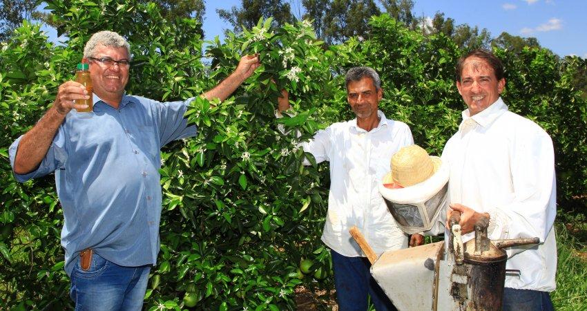 Adoção de boas práticas marca parceria de mais de 20 anos entre citricultor e apicultor