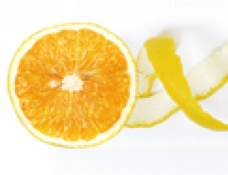 Fundecitrus completa 35 anos de apoio à sanidade citrícola
