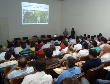 Professor norte americano faz palestra sobre o cancro cítrico e o greening na Flórida