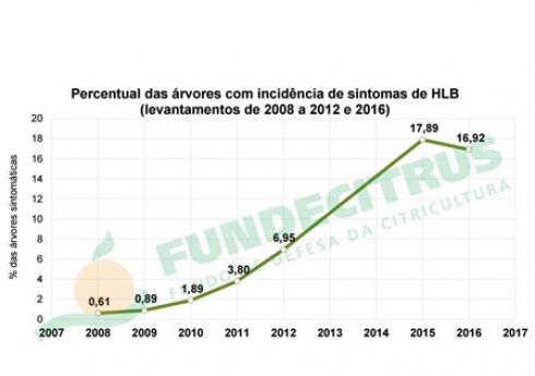 Alta taxa de eliminação de plantas doentes mantém incidência de HLB estável