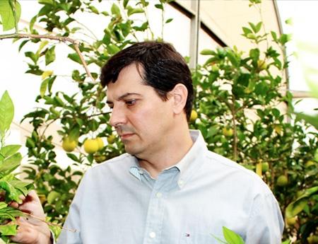 Pesquisador do Fundecitrus é eleito Engenheiro Agrônomo Destaque de 2013