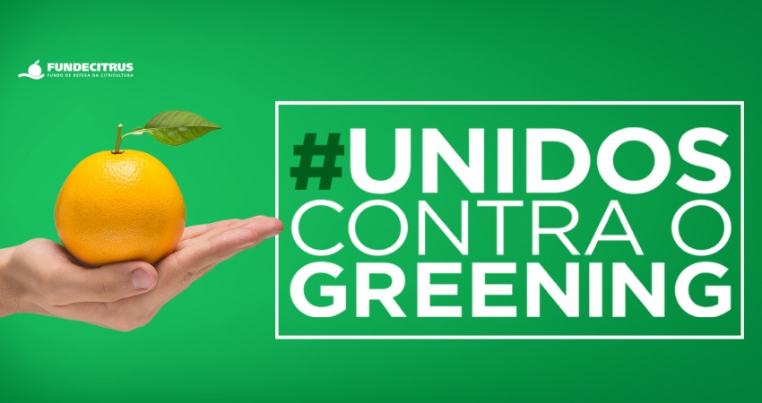 """Fundecitrus lança campanha """"Unidos contra o greening"""" para incentivar o controle da pior doença da citricultura"""
