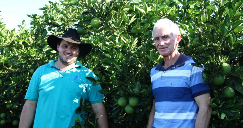 Adoção do manejo completo do greening ajuda citricultores a manterem alta produtividade dos pomares e a doença em níveis baixos