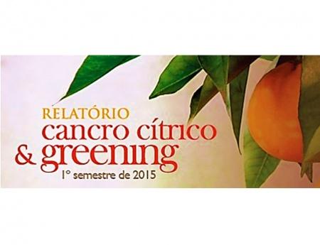 Relatório de greening e cancro cítrico deve ser entregue até 15 de julho