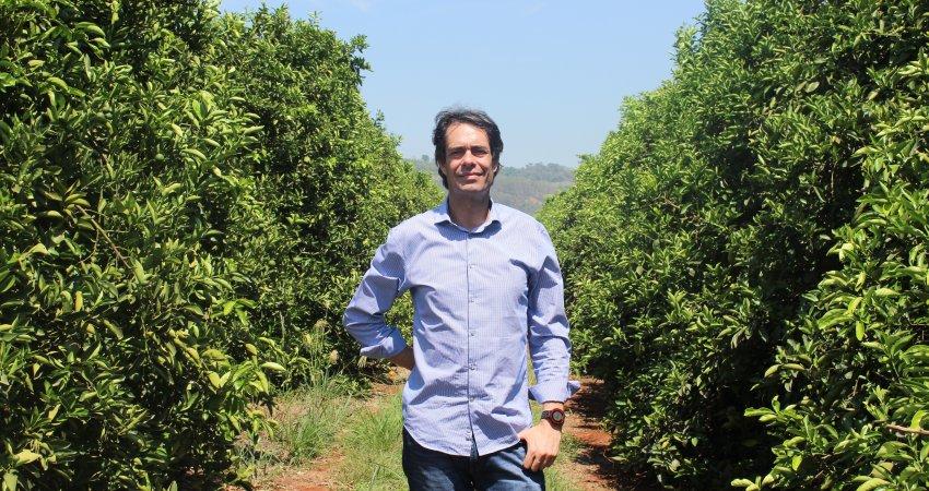 Monitoramento de áreas externas contribui para controle do greening em pomares de citricultor de Tambaú