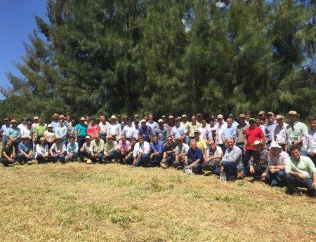 2º Dia de Campo de cancro cítrico reúne mais de 70 citricultores em experimento no Paraná