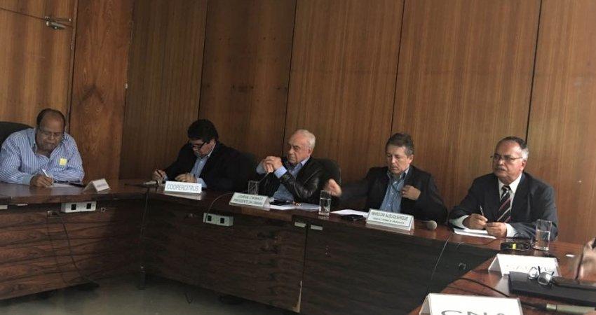 Câmara Setorial da Citricultura discute plano nacional de combate ao HLB
