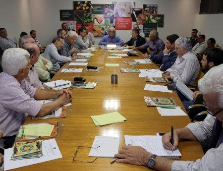 Câmara Setorial da Citricultura define temas prioritários para agenda 2016-2020