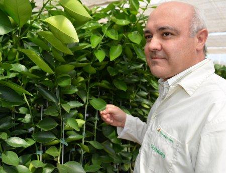 Fundecitrus contrata especialista espanhol em biotecnologia