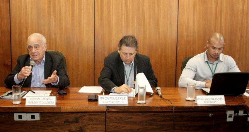 Câmara Setorial da Citricultura avança discussões sobre o plano nacional de controle do greening