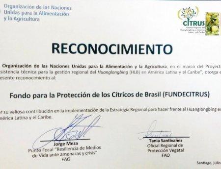 Fundecitrus recebe homenagem da FAO pela contribuição para o controle do HLB